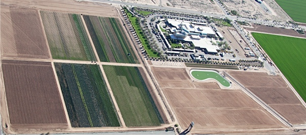 goodyear farm
